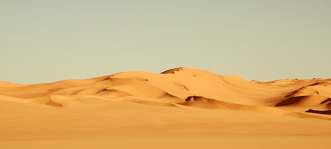 el desierto de la objetividad