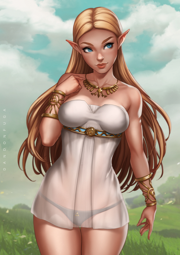 __princess_zelda_the_legend_of_zelda_and_the_legend_of_zelda_breath_of_the_wild_drawn_by_dandon_fuga__bab6a3090c88bb967a803281b108f424